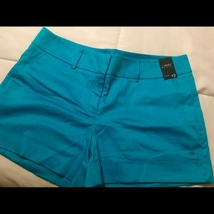 Turquoise Cuff Shorts
